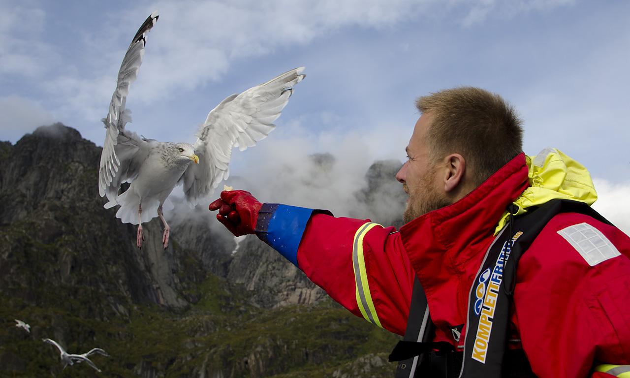 Måsen får også sitt på fisketur med Ivar! Foto: Eivind Netland